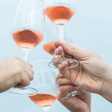Naročite naša vina preko spleta
